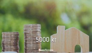 5000 kr